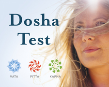 Ayurveda Konstitutionstest