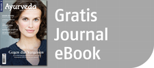 Newsletter mit einem gratis Journal als eBook